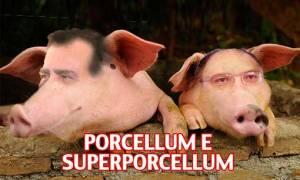 porcellum-superporcellum