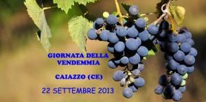 caiazzo-vendemmia-2013