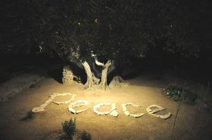 Peace-