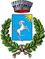 riardo-comune-logo-1