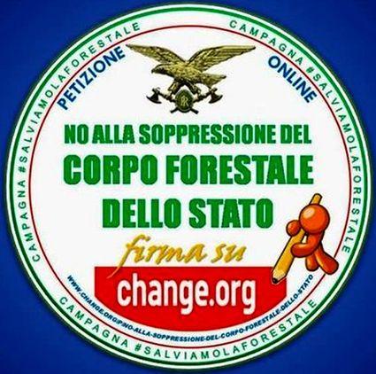 forestale-15x15-soppressione-no-1