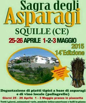 squlle-sagra-12x15-asparagi-2015