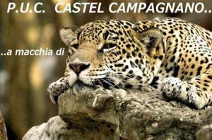 castel-puc-15x10-leopardo-1