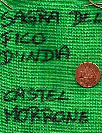 sagra-11x15-borsa-castel-morrone-13